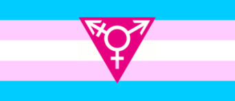 transgender-flag-triangle